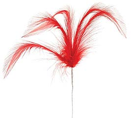 FLORAL RED FEATHER