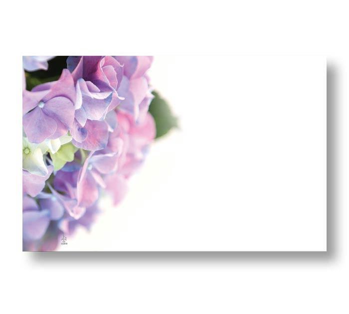 ENCL CARD HYDRANGEA