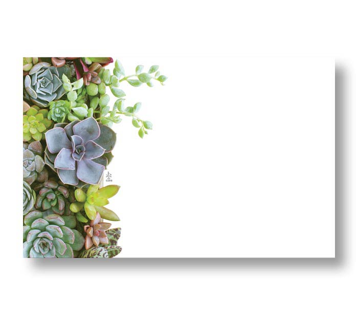 ENCL CARD SUCCULENTS