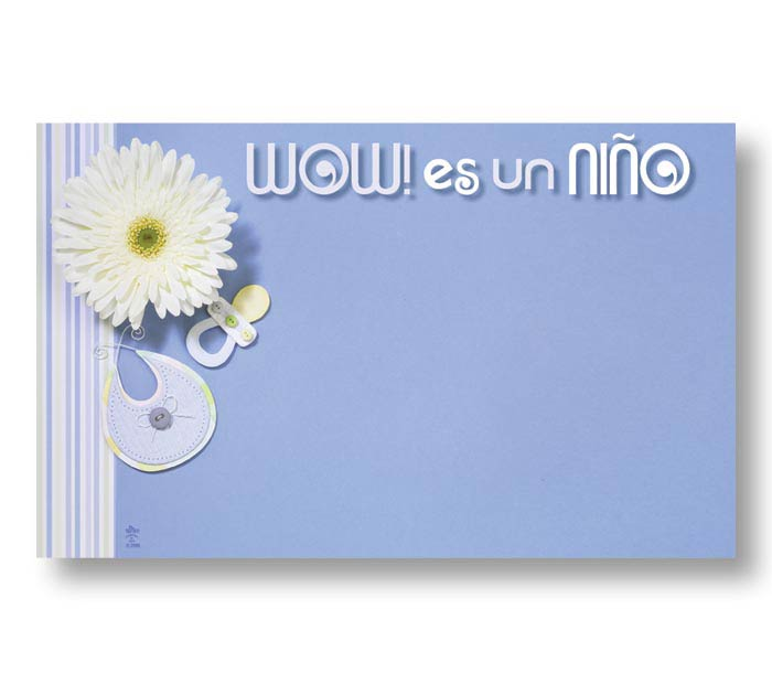 ENCL CARD SPANISH IT'S A BOY