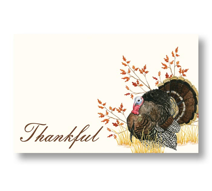 ENCL CARD AUTUMN FEATHERS THANKFUL