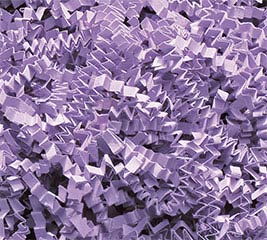 ORCHID CRINKLE CUT SHRED 10 LB