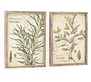 WALL HANGING ELEMENTAL HERBS WOOD