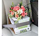 CARRIER MED BUCKLE ME IN VASE CARRIER 1st Alternate Image