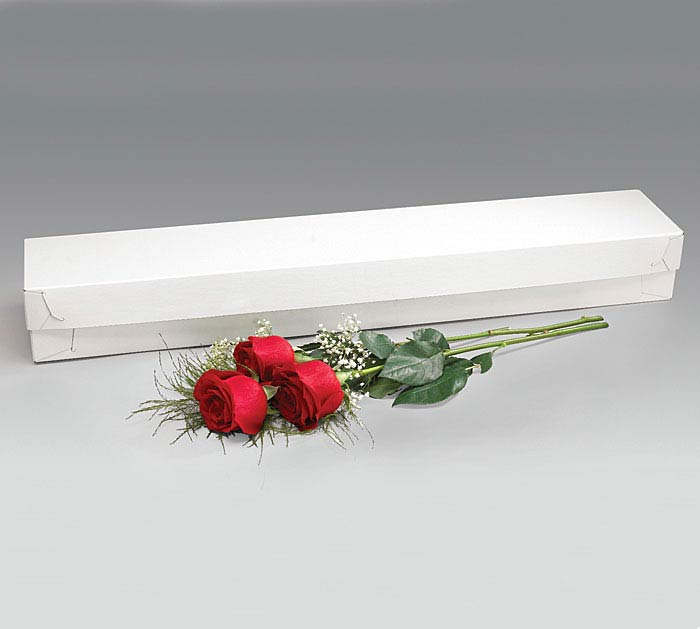 BOX-WHITE FLOWER BOX