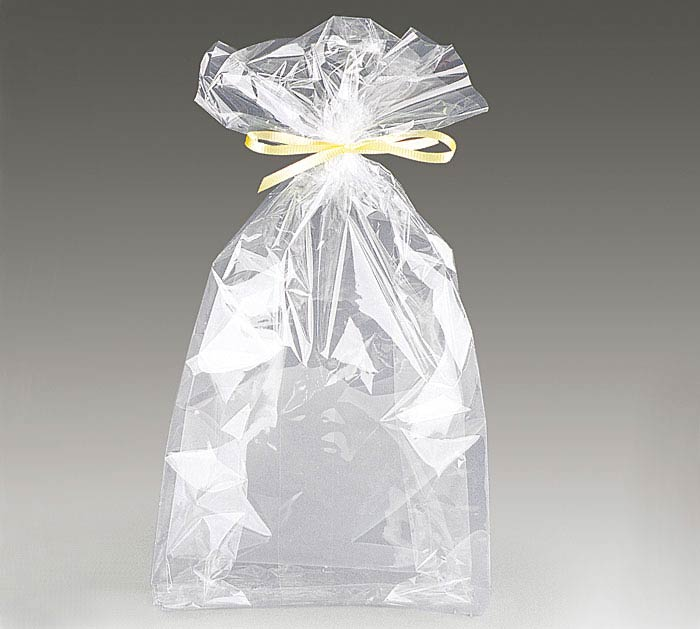 "CLEAR CELLO BAG 6""H X 2 1/2""w"