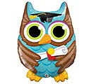 "34""PKG GRADUATE OWL"