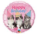 "18""PKG BIRTHDAY KITTENS STUDIO PETS"