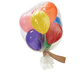 BALLOON DELIVERY BAG