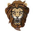 "25""PKG TEAM LIONS"