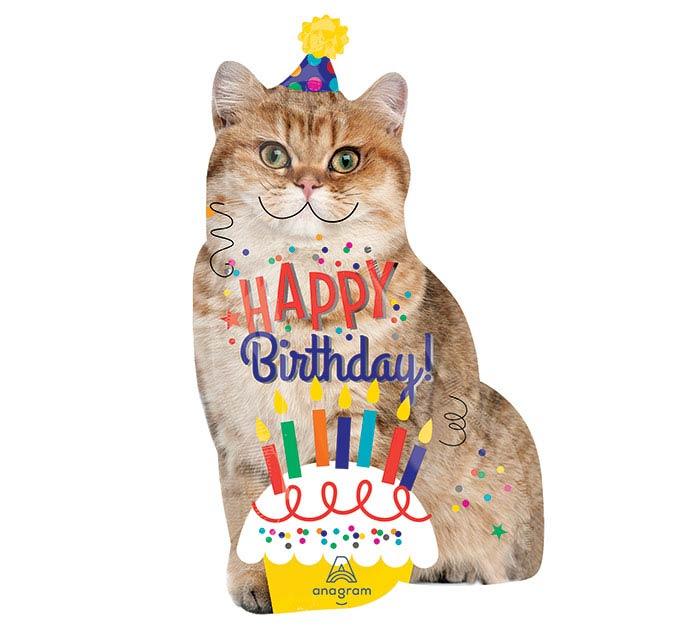 "33""PKG HBD BIRTHDAY CAT"