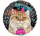 "17""PKG HBD BIRTHDAY CAT"