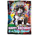 "17""PKG HBD AVANTI PARTY ANIMAL JR SHAPE"