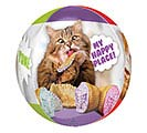 "16""PKG CLEAR ORBZ AVANTI CATS BALLOON"