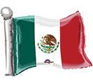 """26""""MEXICAN FLAG SH"""