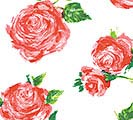 20X30 TISSUE COTTAGE ROSE
