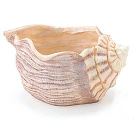 SEASHELL RESIN PLANTER