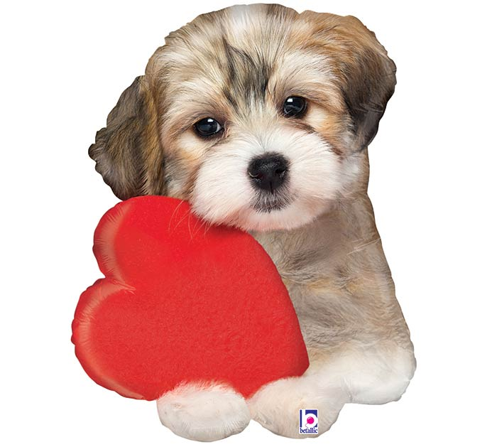 "29""PKG LUV ADORABLE PUPPY LOVE SHAPE"