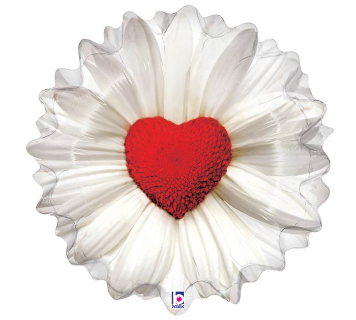 "24""PKG LUV DAISY HEART SHAPE"