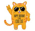 "33""PKG COOL CAT BIRTHDAY"