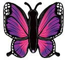 "46""PKG RADIANT PINK BUTTERFLY"