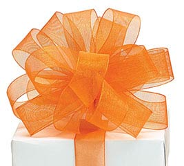 #5 ORANGE SHEER RIBBON