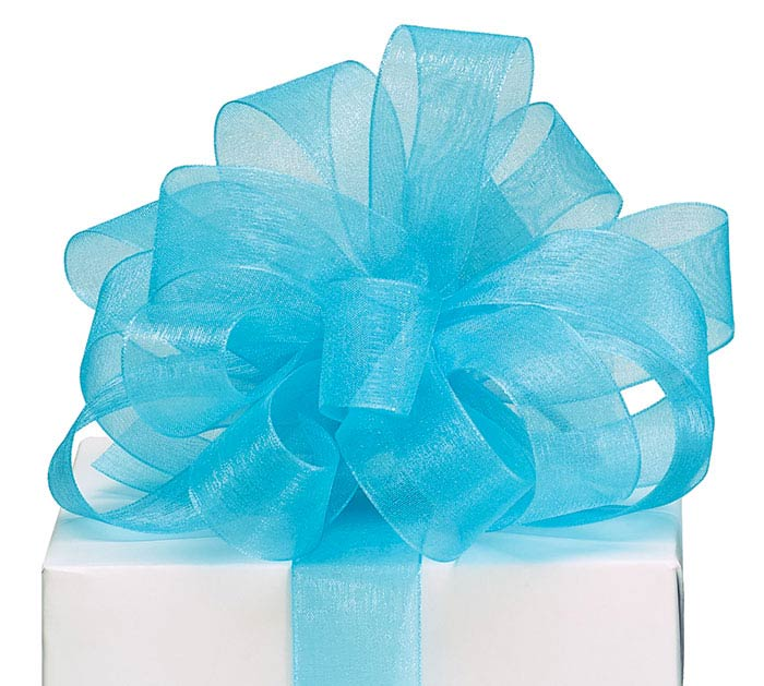 #5 TEAL SHEER RIBBON
