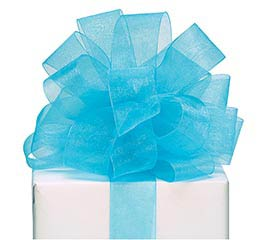 #9 TEAL SHEER RIBBON