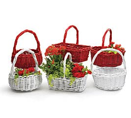 RED OR WHITE ASSORTED BASKET SET