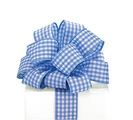 #9 BLUE GINGHAM WIRED RIBBON