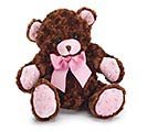 PLUSH BROWN/PINK BEAR