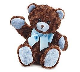 PLUSH BROWN/BLUE BEAR