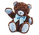 PLUSH BROWN/BLUE BEAR