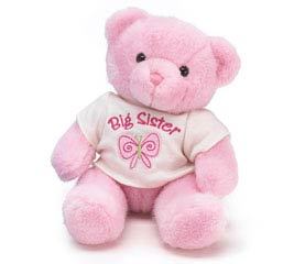 PLUSH PINK BIG SISTER BEAR
