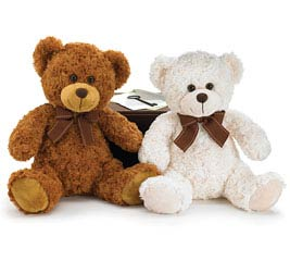 PLUSH WHITE/BROWN BEAR PAIR