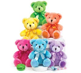 PLUSH BRIGHT COLORS BEAR SET