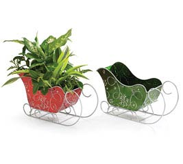 RED/GREEN TIN SLEIGH PLANTER SET