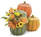 FALL PUMPKIN SHAPED PLANTER SET WITH LID