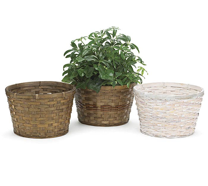 "8"" BAMBOO POT COVER SET"