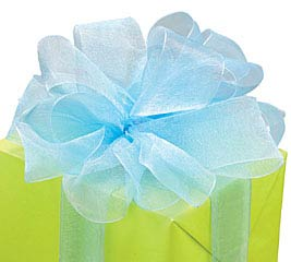 #9 LIGHT BLUE SHEER RIBBON