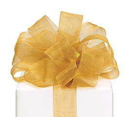#9 GOLD SHEER RIBBON