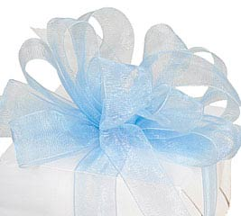 #5 LIGHT BLUE SHEER RIBBON