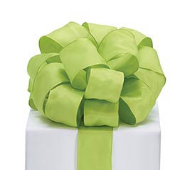 #9 LIME GREEN TAFFETA RIBBON