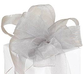 #5 PEWTER SHEER RIBBON