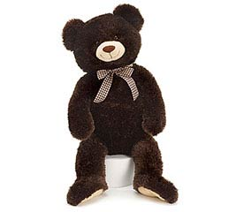 PLUSH CHOCOLATE BROWN BEAR
