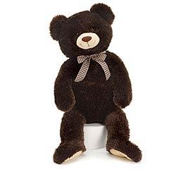 PLUSH CHOCOLATE BROWN BEAR