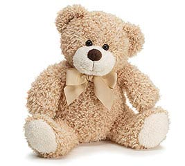 PLUSH LIGHT BROWN BEAR W/CHECKED BOW
