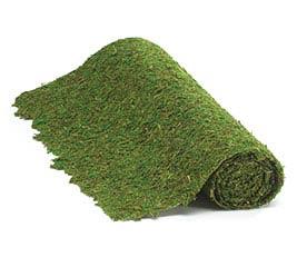 GREEN MOSS FLORAL MAT