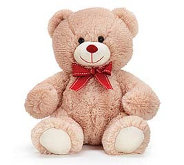 "10"" BEIGE VALENTINE BEAR WITH RED BOW"