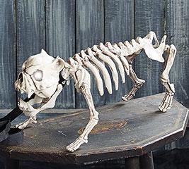 DOG SKELETON WITH ANIMATED EYES/SOUNDS